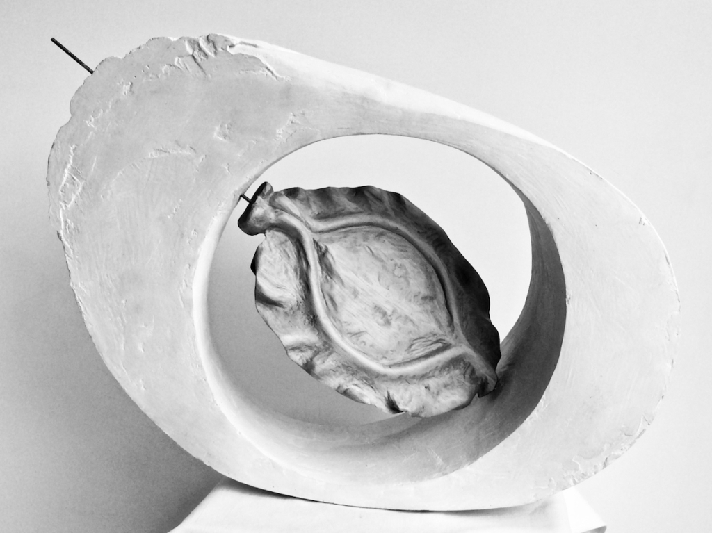 Barbara Seed 2016  A sculpture - Plaster hollow ovoid wedge with carved wooden seed inside. An ode to the work of Barbara Hepworth.